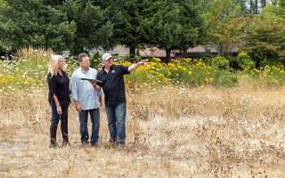 Как взять земельный участок в аренду для строительства дома?