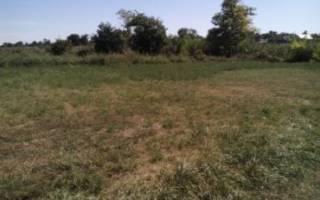 Изъятие неиспользуемых земельных участков