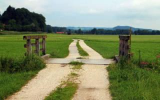 Возможность получения земельного участка сель хоз назначения