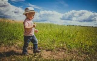 Какие необходимы документы для оформления дарственной на земельный участок?