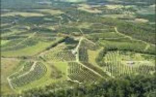 Какая ответственность за отсутствие договора аренды земли